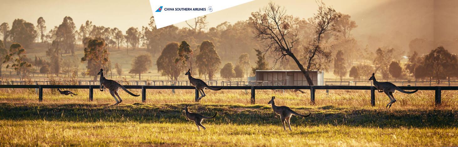 China Southern - Australië