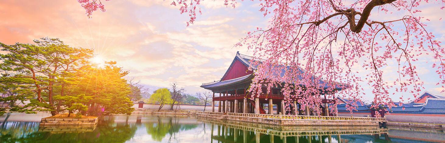 Best southkorea